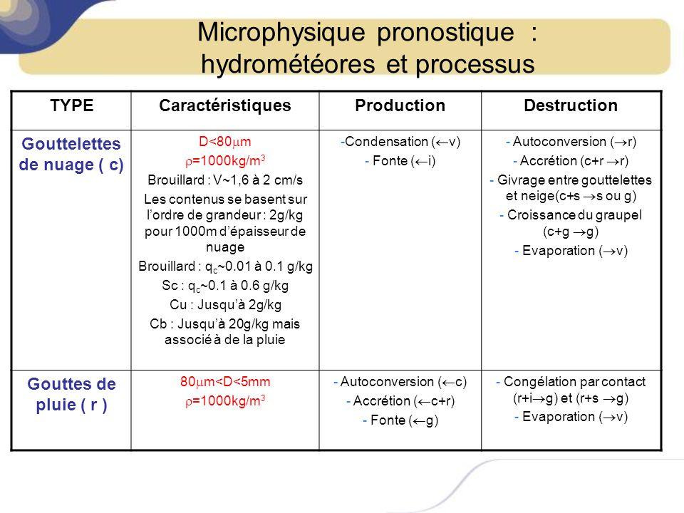 Microphysique pronostique : hydrométéores et processus