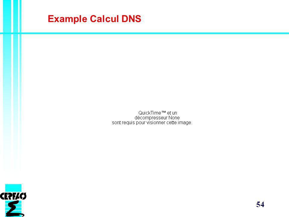 Example Calcul DNS