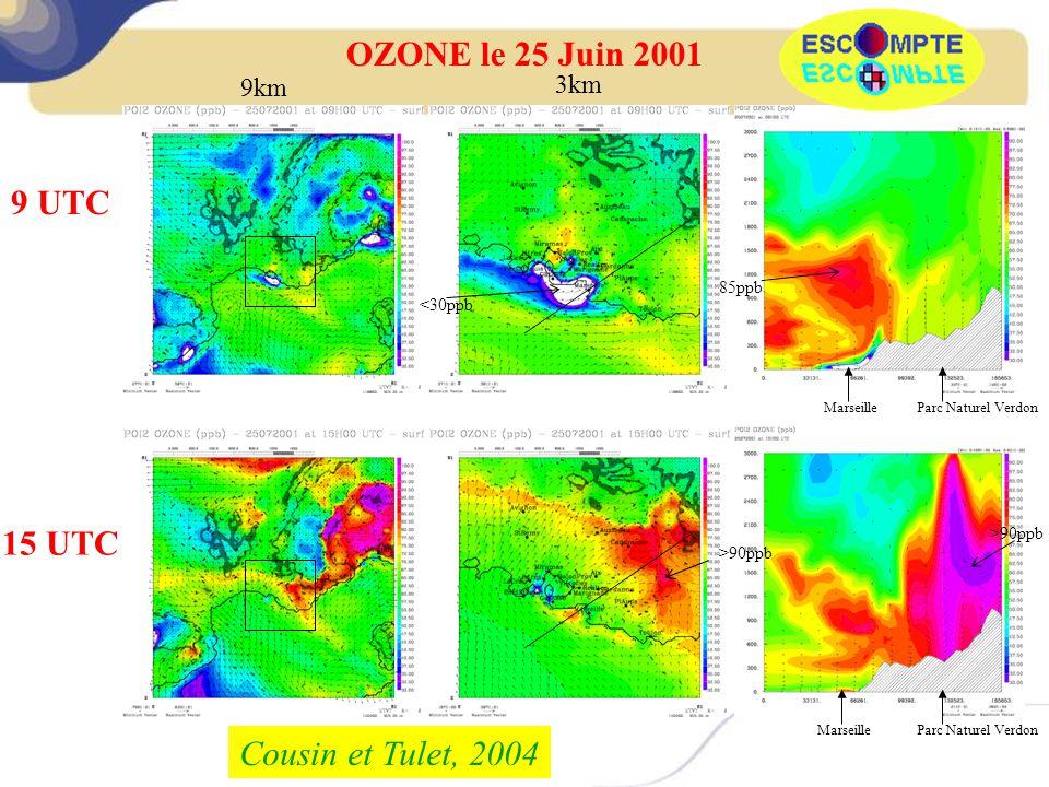 OZONE le 25 Juin 2001 9 UTC 15 UTC Cousin et Tulet, 2004 9km 3km 85ppb