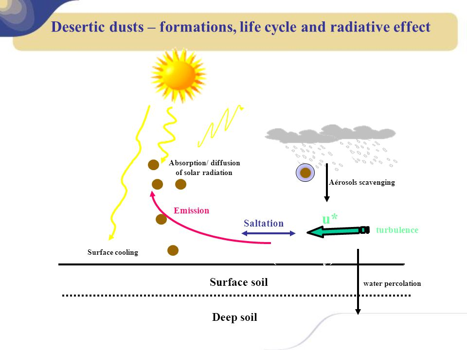 Desertic dusts – formations, life cycle and radiative effect