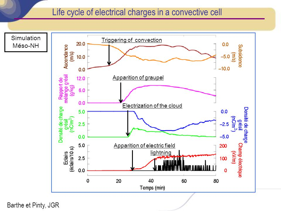 Life cycle of electrical charges in a convective cell