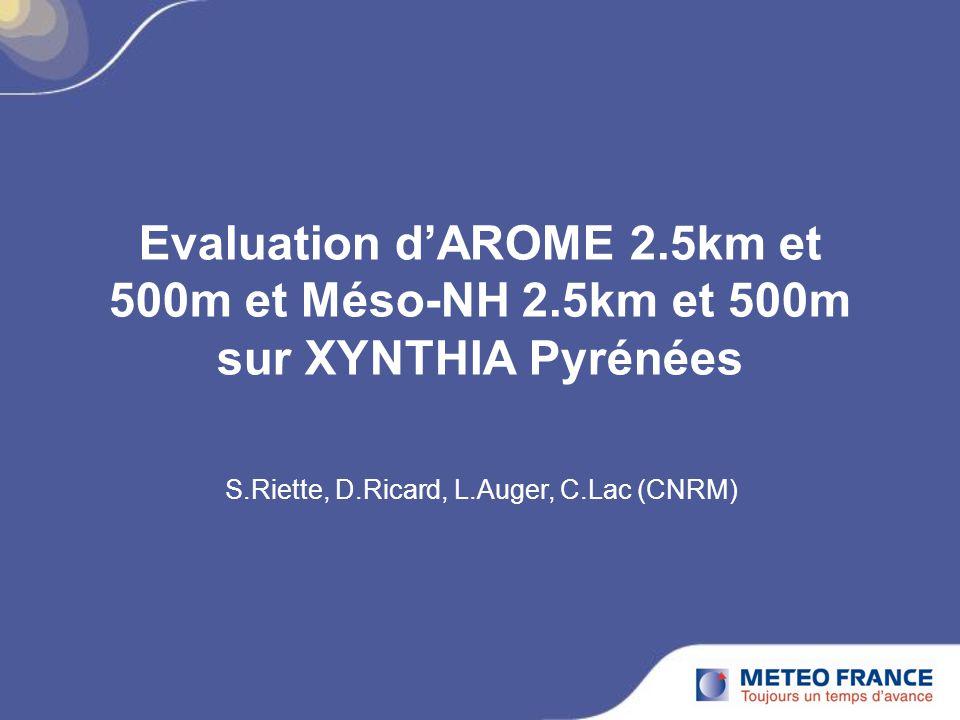 S.Riette, D.Ricard, L.Auger, C.Lac (CNRM)