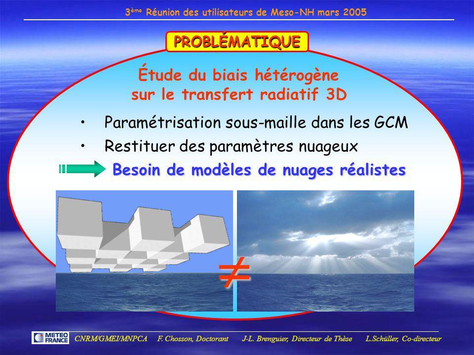Étude du biais hétérogène sur le transfert radiatif 3D
