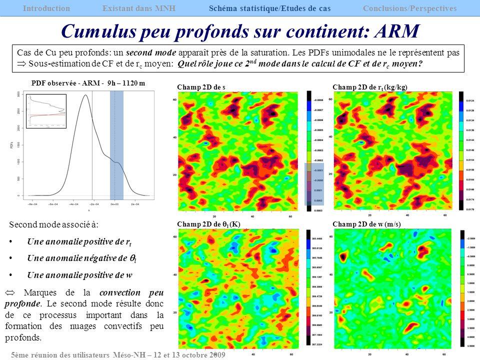 Cumulus peu profonds sur continent: ARM