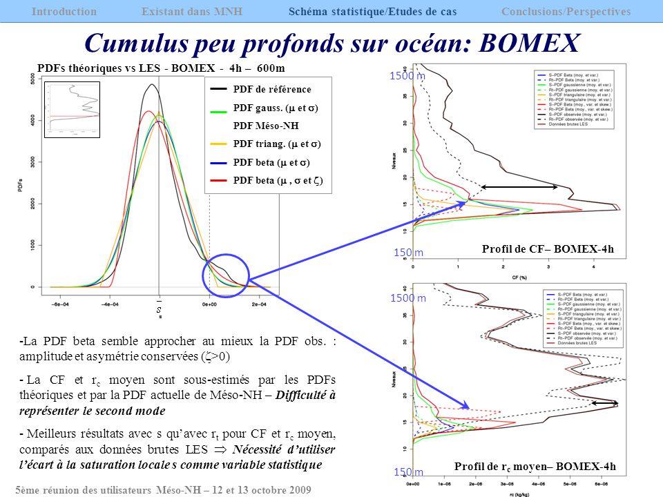 Cumulus peu profonds sur océan: BOMEX