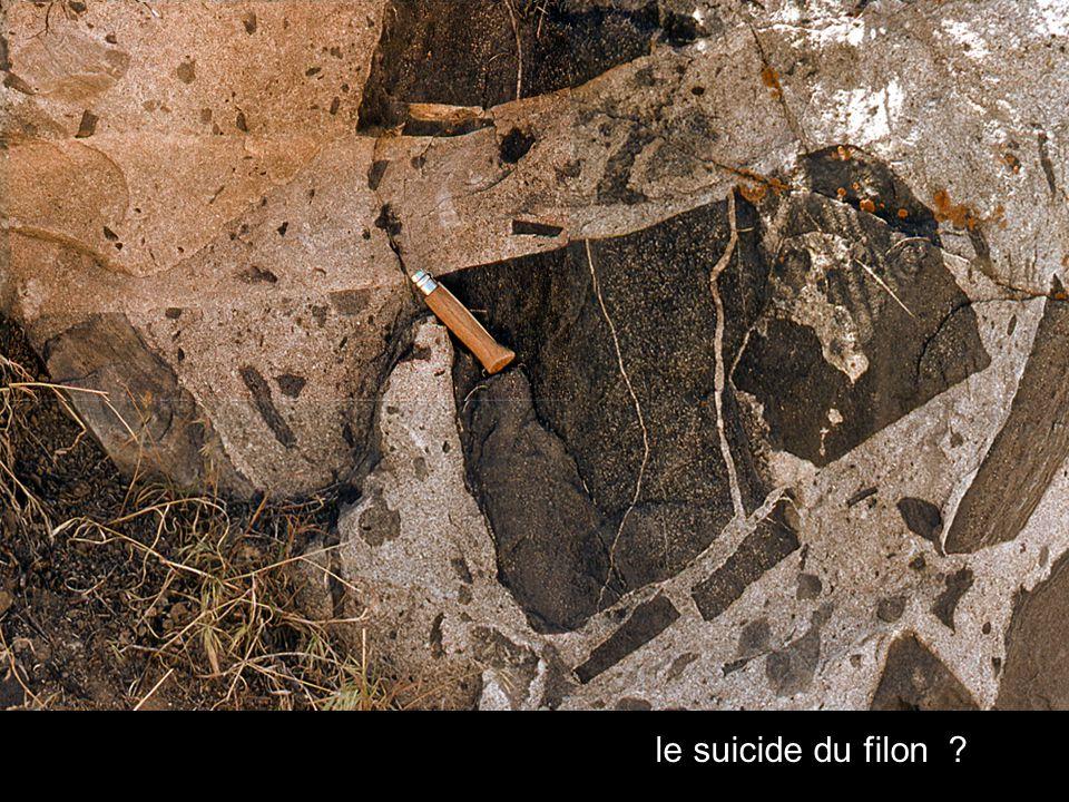le suicide du filon