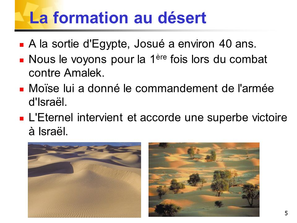 La formation au désert A la sortie d Egypte, Josué a environ 40 ans.