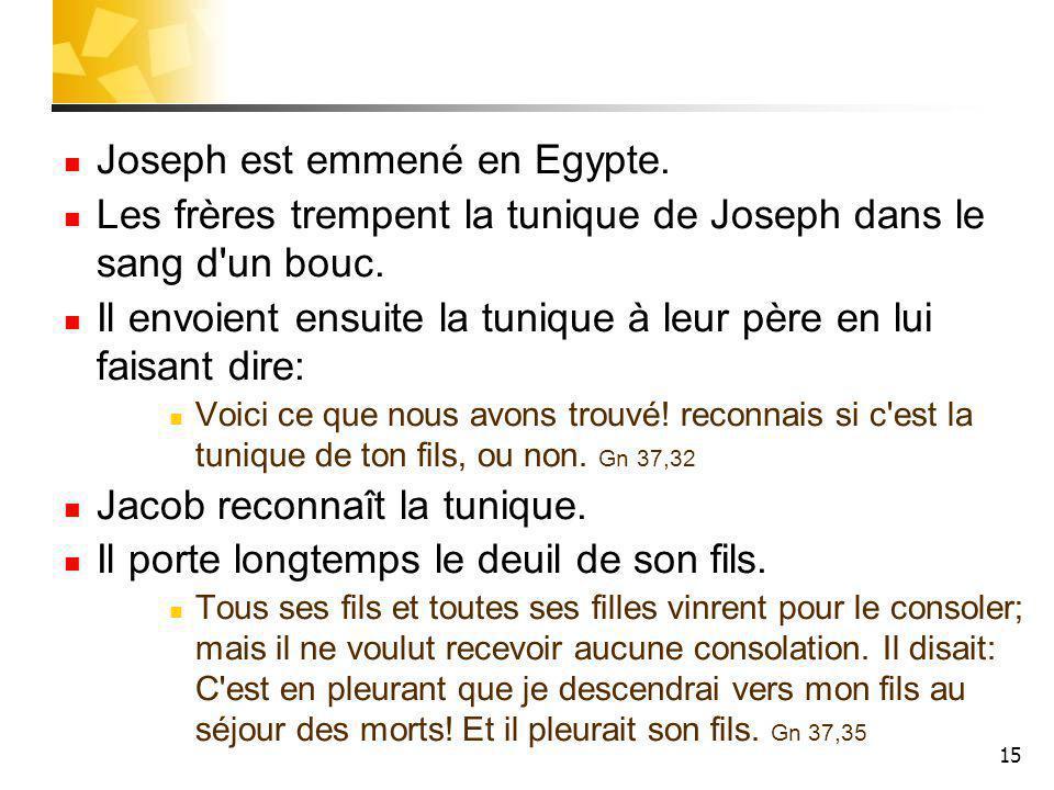 Joseph est emmené en Egypte.