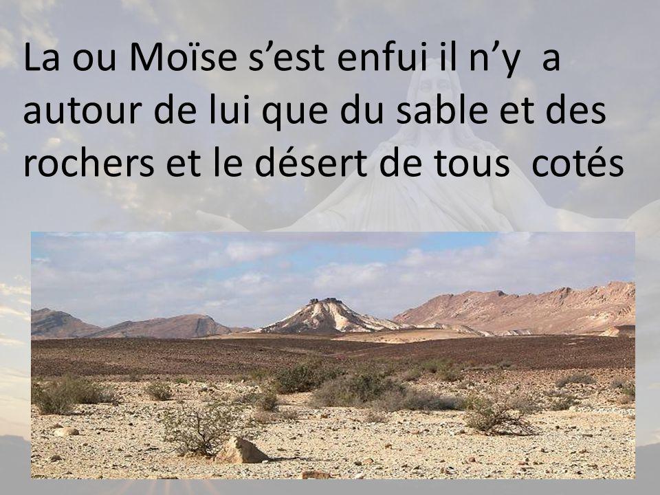 La ou Moïse s'est enfui il n'y a autour de lui que du sable et des rochers et le désert de tous cotés