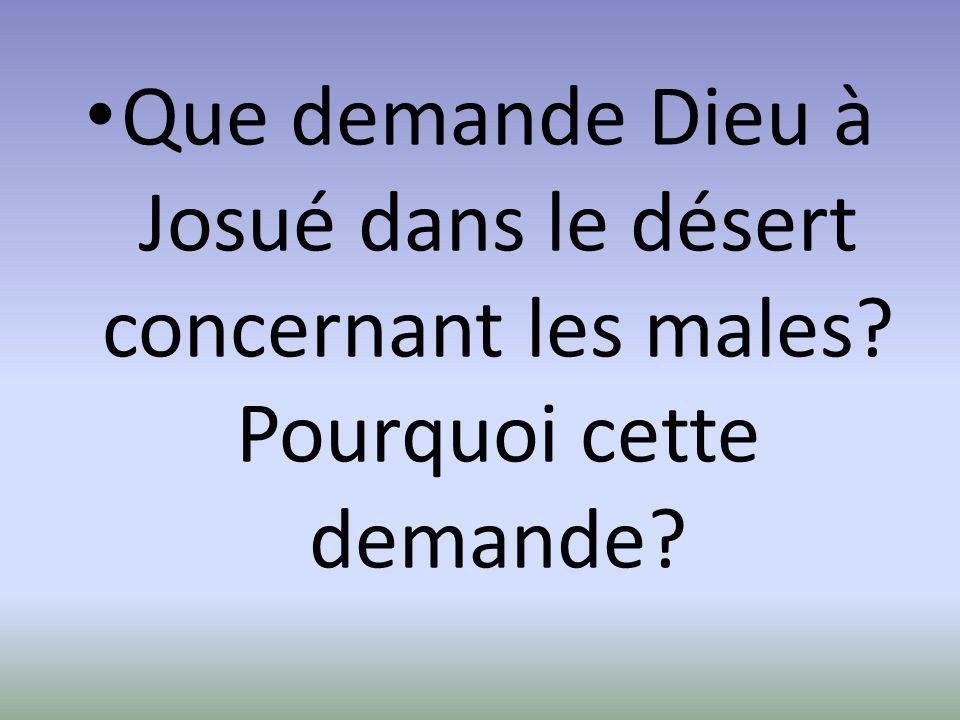 Que demande Dieu à Josué dans le désert concernant les males