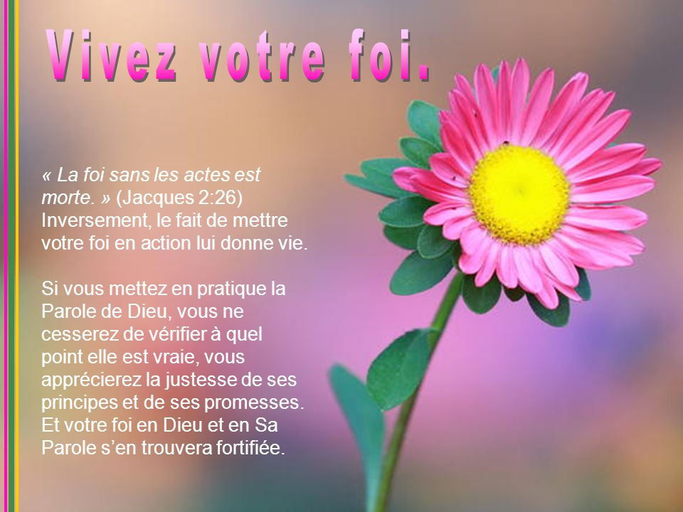Vivez votre foi. « La foi sans les actes est morte. » (Jacques 2:26) Inversement, le fait de mettre votre foi en action lui donne vie.