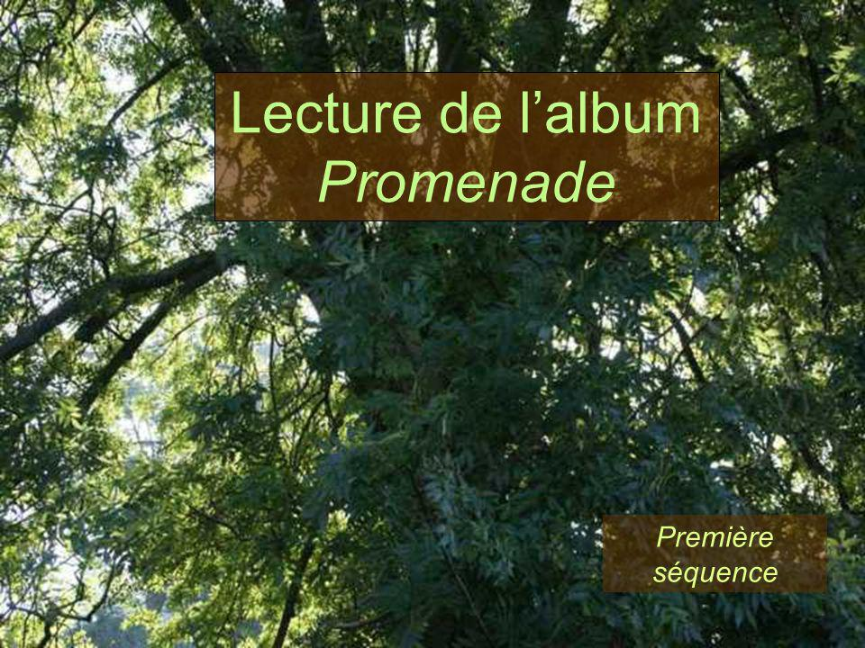 Lecture de l'album Promenade