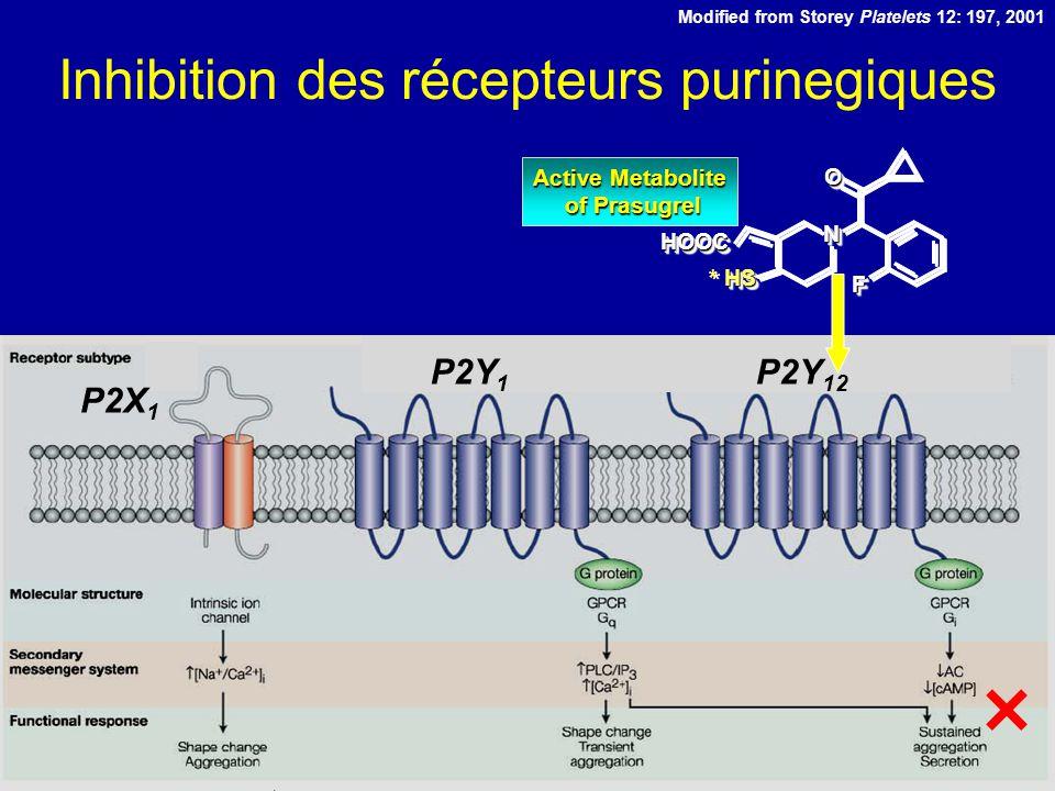Inhibition des récepteurs purinegiques