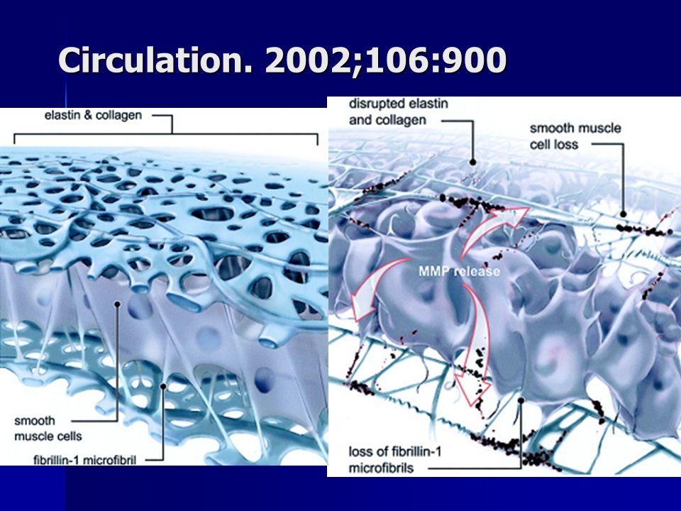 Circulation. 2002;106:900