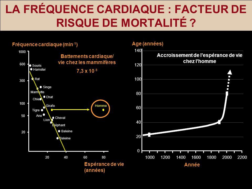 LA FRÉQUENCE CARDIAQUE : FACTEUR DE RISQUE DE MORTALITÉ