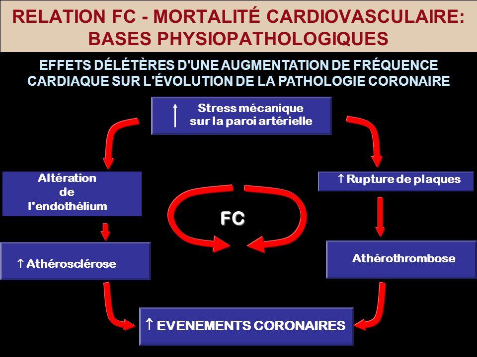 RELATION FC - MORTALITÉ CARDIOVASCULAIRE: BASES PHYSIOPATHOLOGIQUES