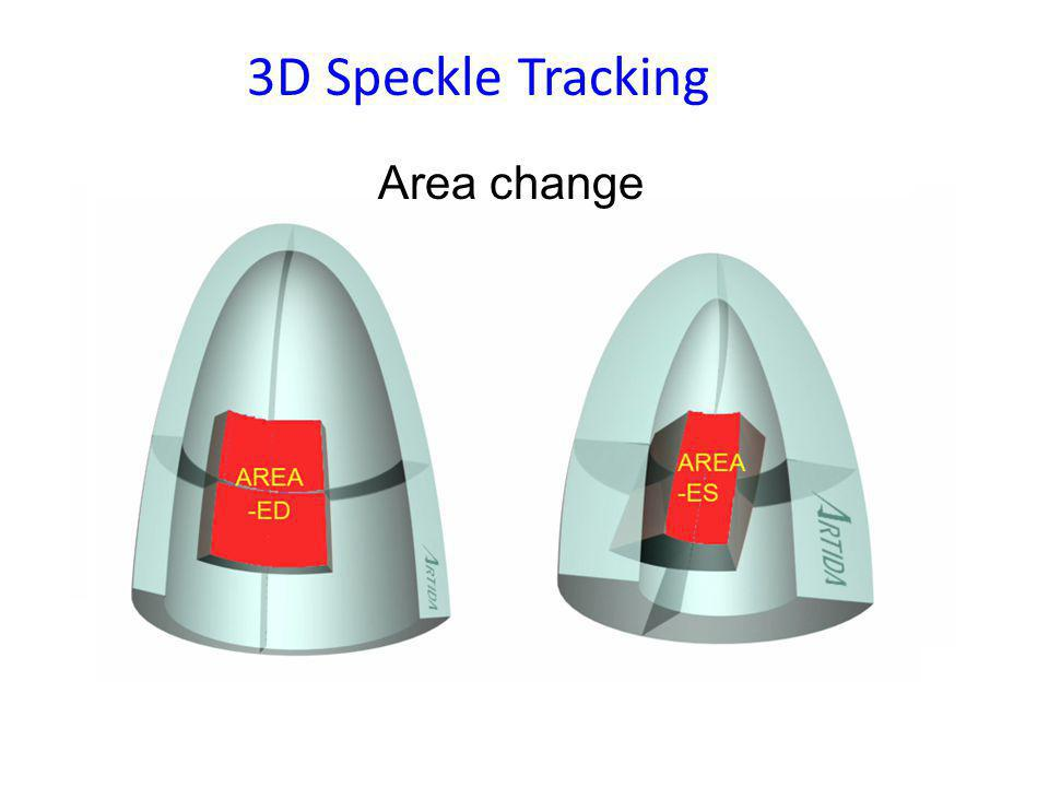 3D Speckle Tracking Area change
