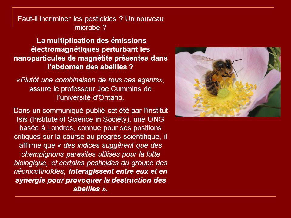 Faut-il incriminer les pesticides Un nouveau microbe
