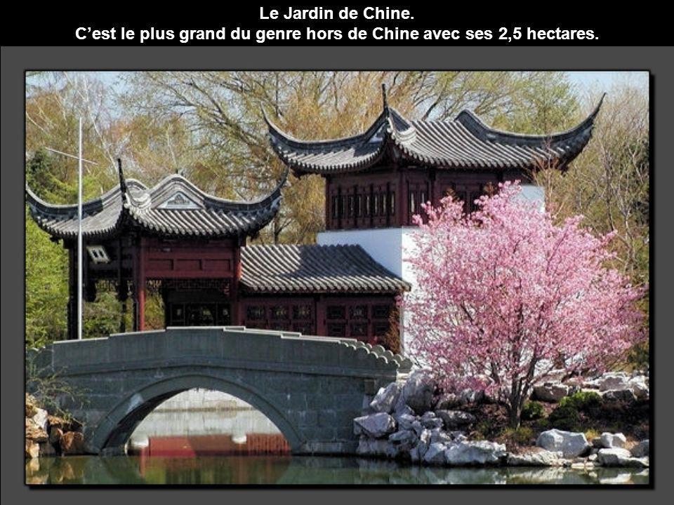 C'est le plus grand du genre hors de Chine avec ses 2,5 hectares.