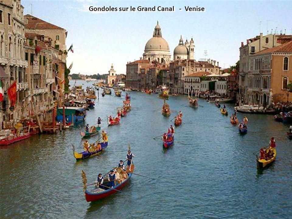 Gondoles sur le Grand Canal - Venise