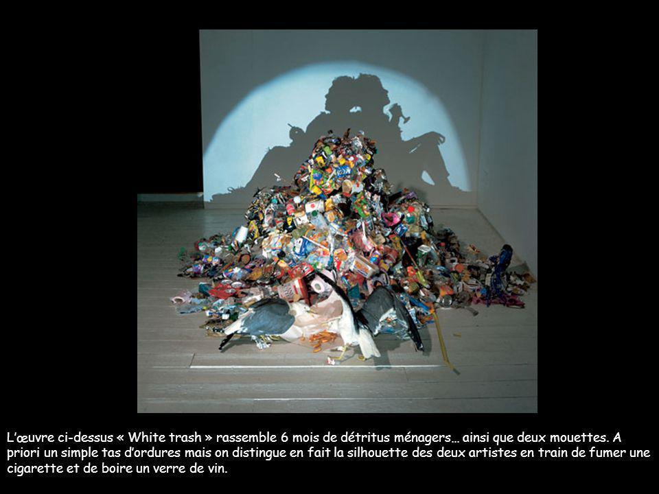 L'œuvre ci-dessus « White trash » rassemble 6 mois de détritus ménagers… ainsi que deux mouettes.
