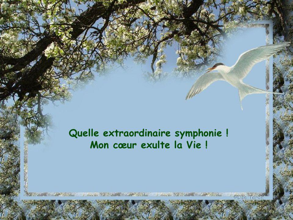Quelle extraordinaire symphonie !