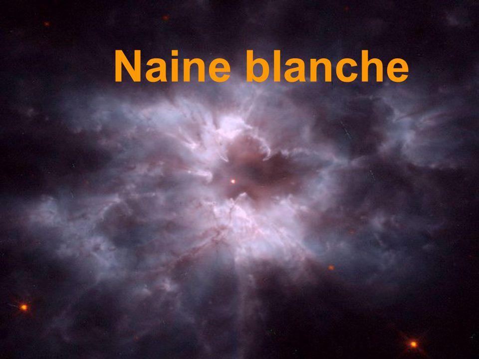 Naine blanche