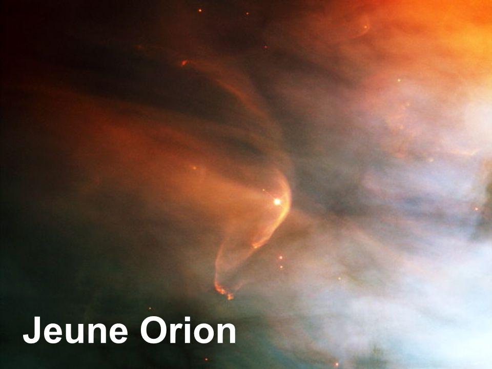 Jeune Orion