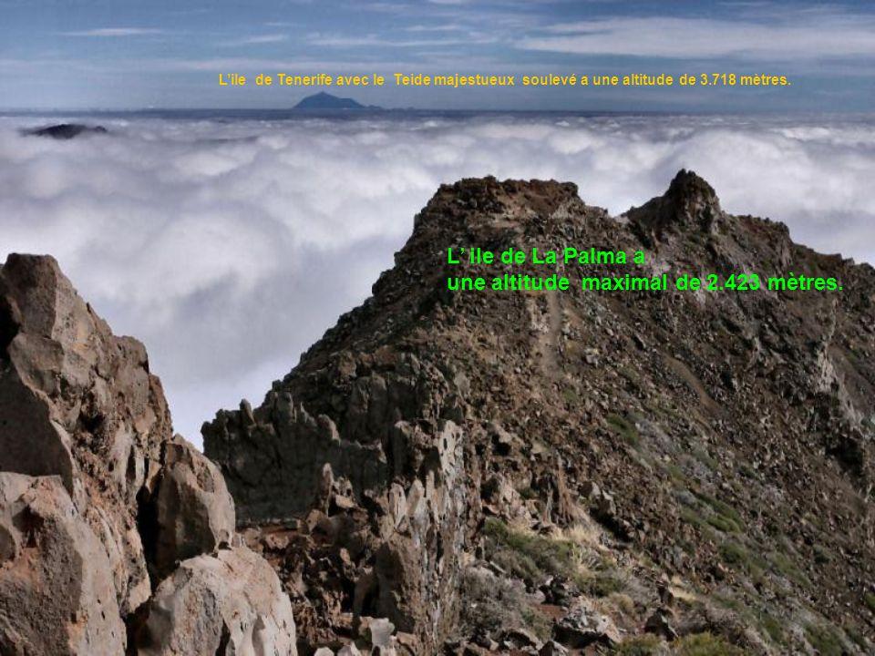 une altitude maximal de 2.423 mètres.