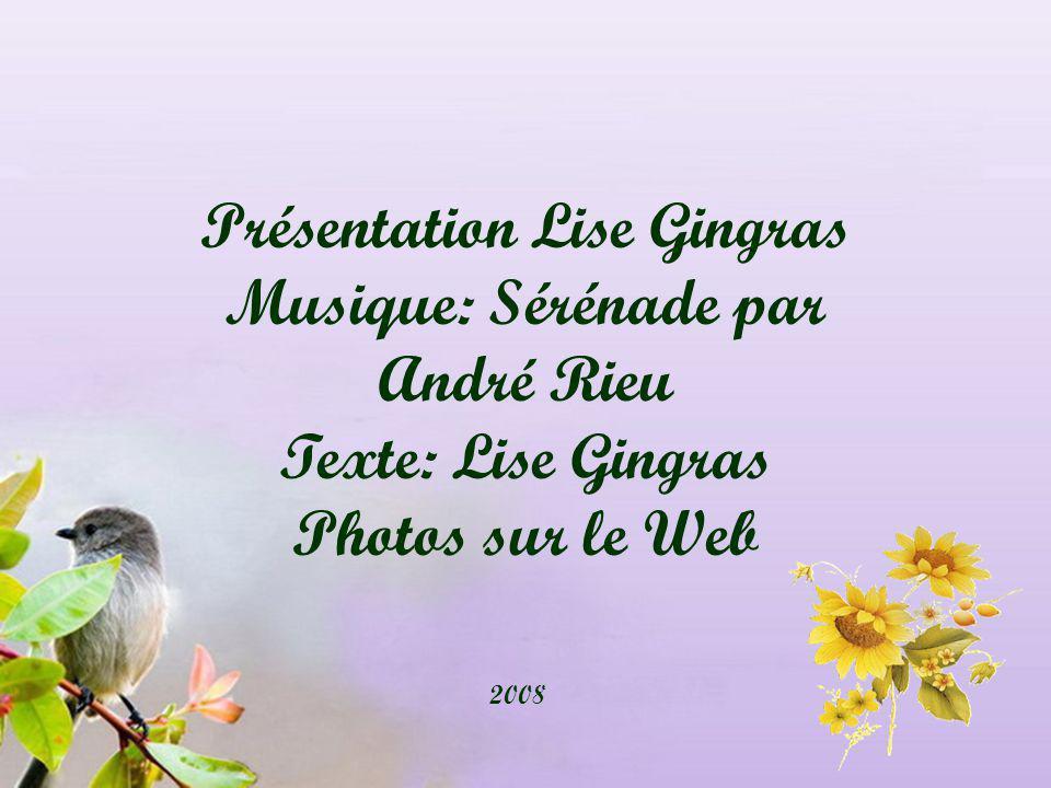 Présentation Lise Gingras Musique: Sérénade par André Rieu