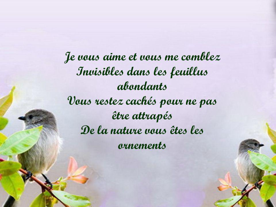 Je vous aime et vous me comblez Invisibles dans les feuillus abondants