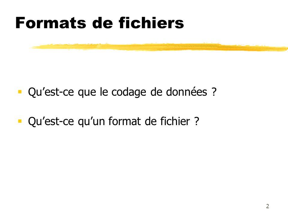 Formats de fichiers Qu'est-ce que le codage de données