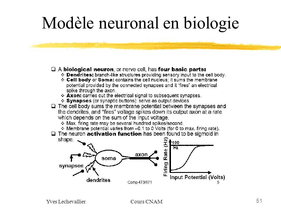 Modèle neuronal en biologie