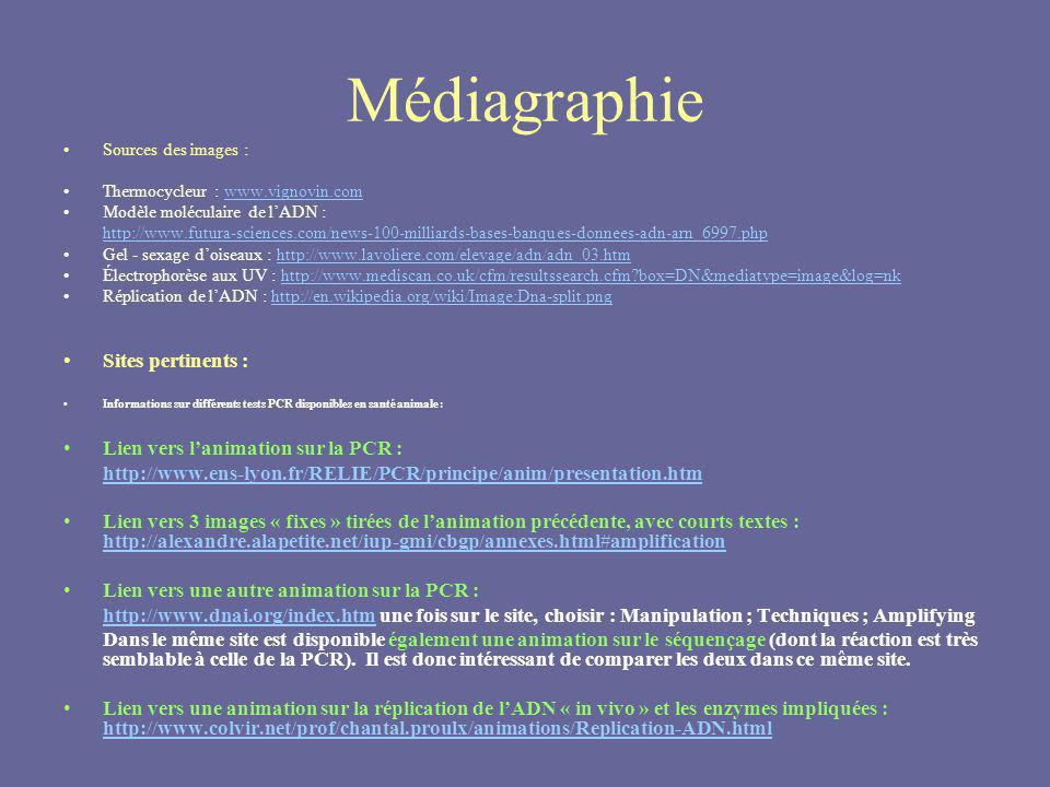 Médiagraphie Sites pertinents : Lien vers l'animation sur la PCR :