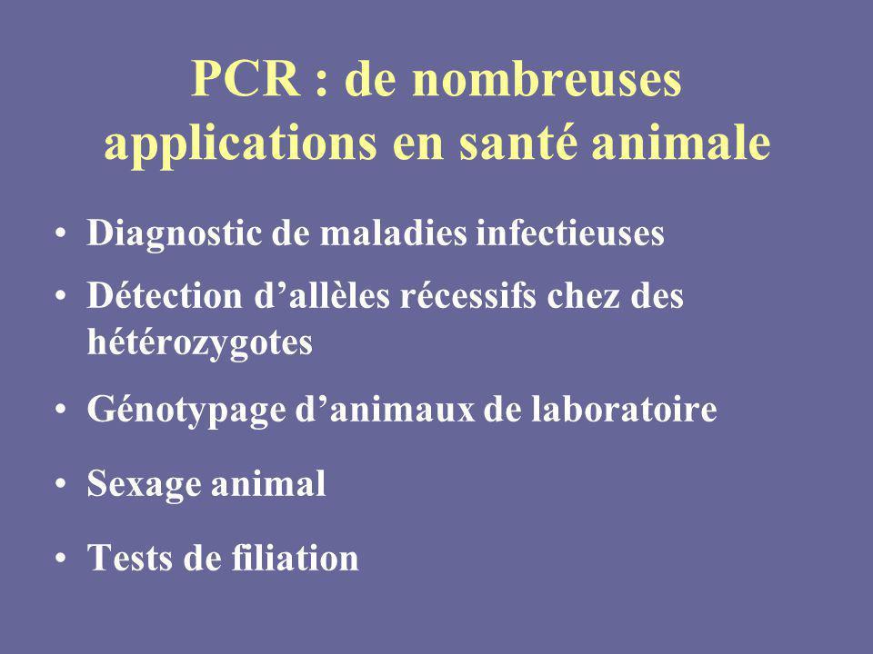 PCR : de nombreuses applications en santé animale