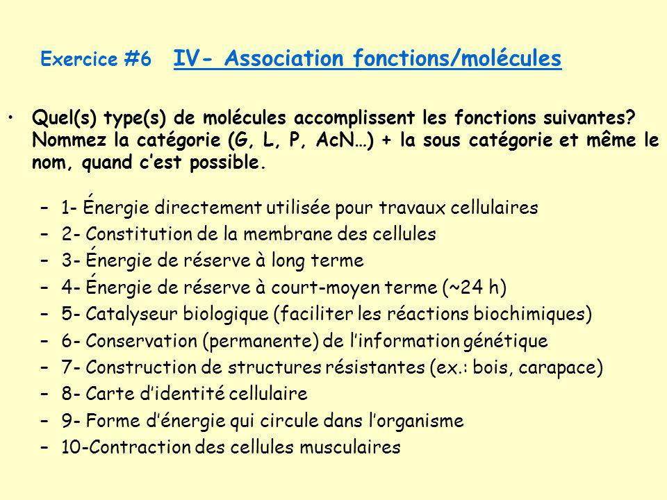 Exercice #6 IV- Association fonctions/molécules