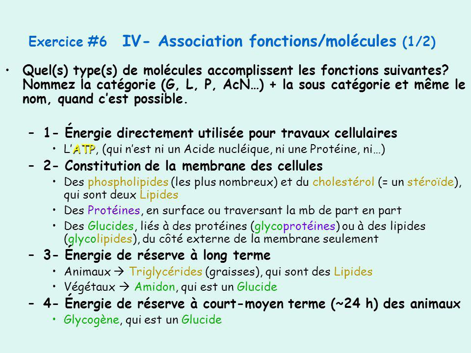 Exercice #6 IV- Association fonctions/molécules (1/2)
