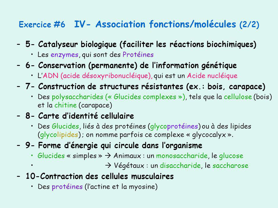 Exercice #6 IV- Association fonctions/molécules (2/2)