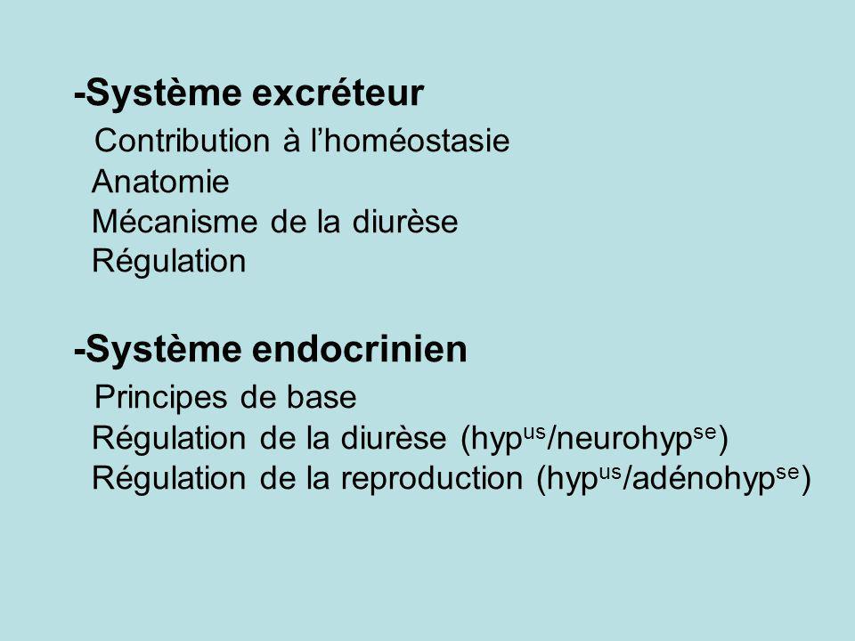 -Système excréteur Contribution à l'homéostasie Anatomie Mécanisme de la diurèse Régulation -Système endocrinien Principes de base Régulation de la diurèse (hypus/neurohypse) Régulation de la reproduction (hypus/adénohypse)
