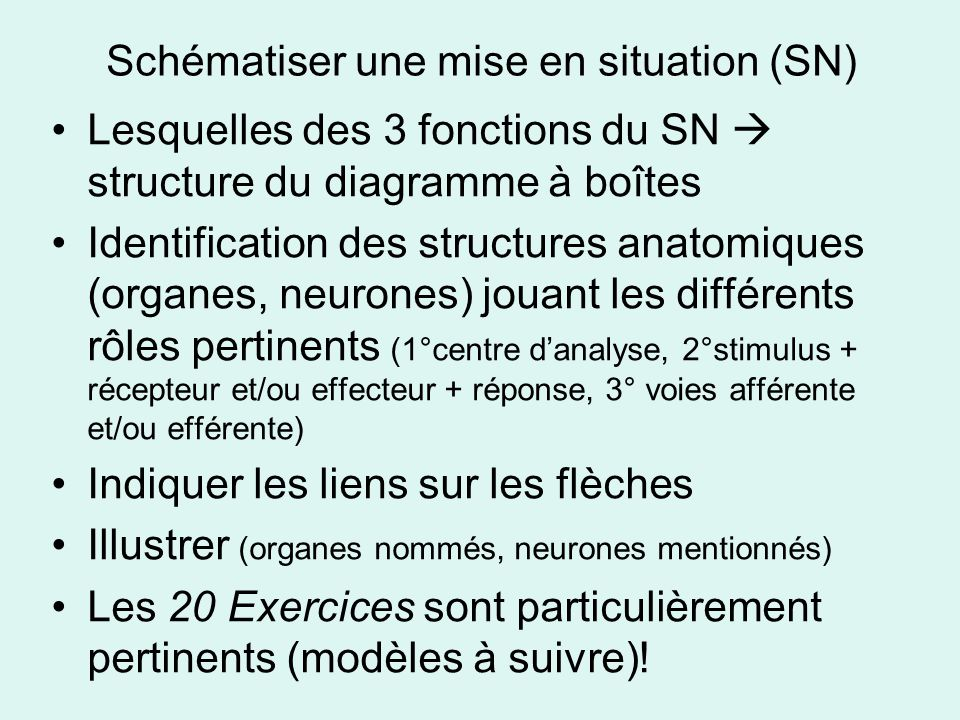 Schématiser une mise en situation (SN)