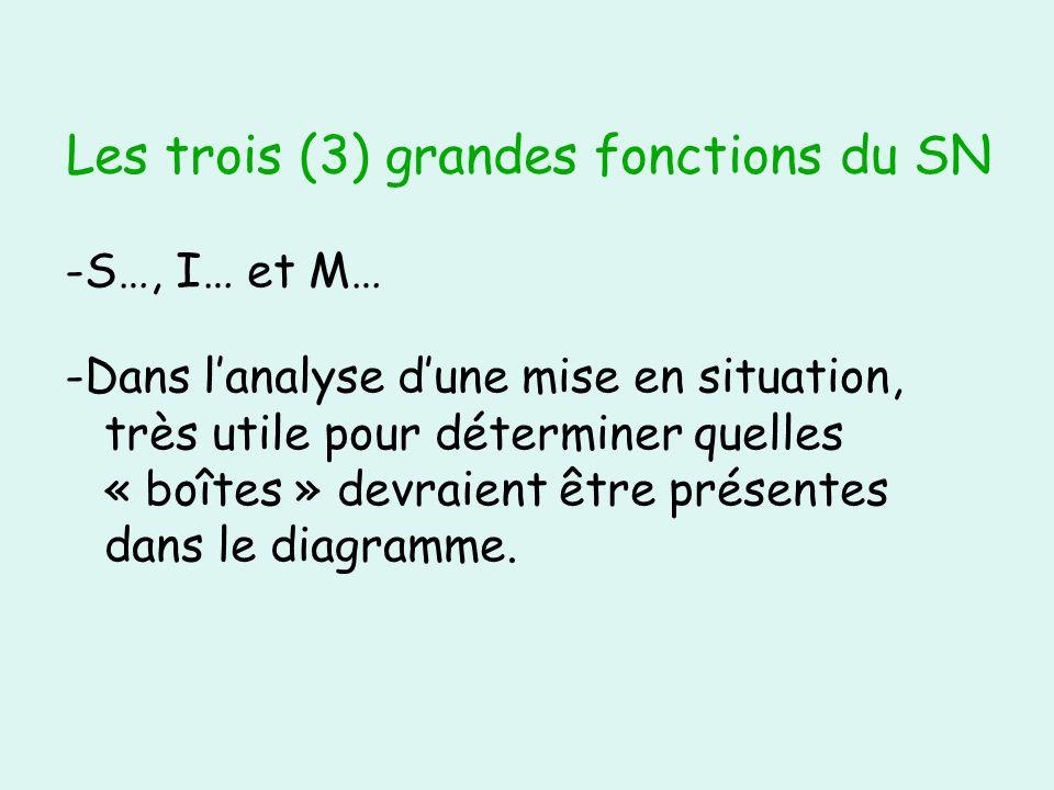Les trois (3) grandes fonctions du SN