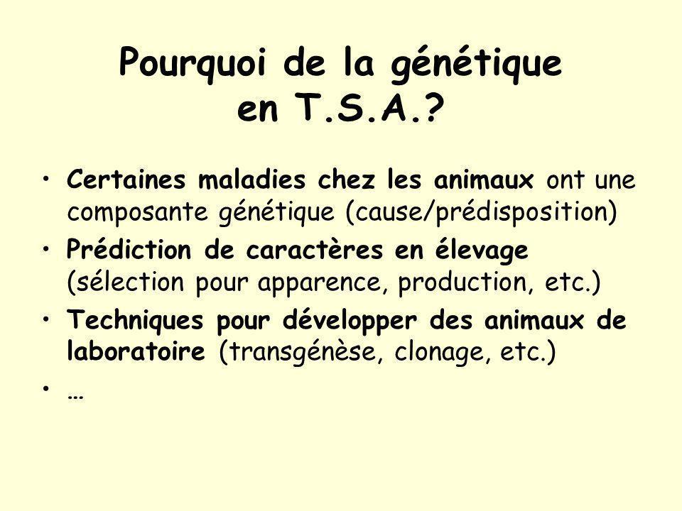 Pourquoi de la génétique en T.S.A.