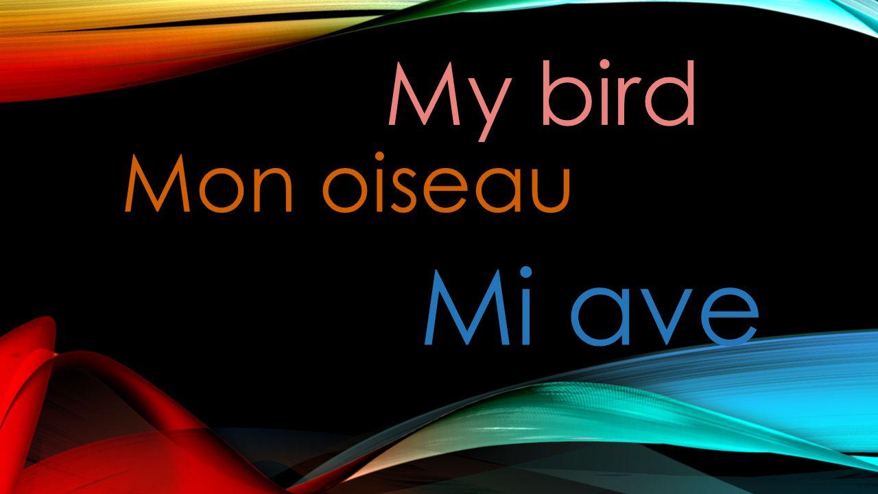 My bird Mon oiseau Mi ave