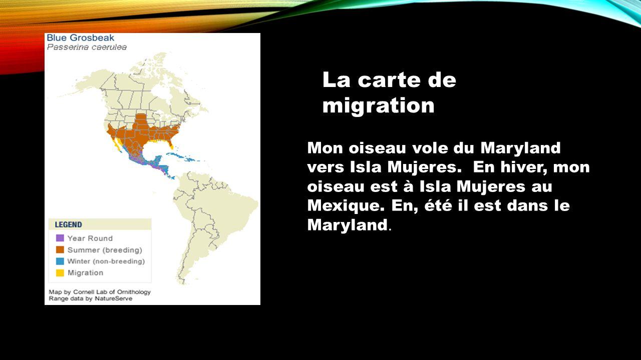 La carte de migration