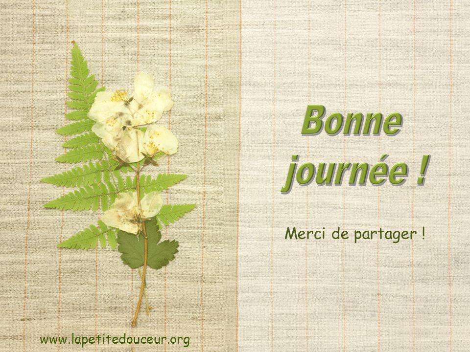 Merci de partager ! www.lapetitedouceur.org