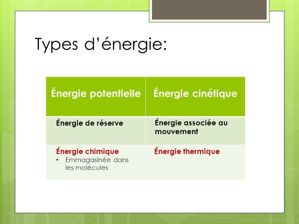 Types d'énergie: Énergie potentielle Énergie cinétique