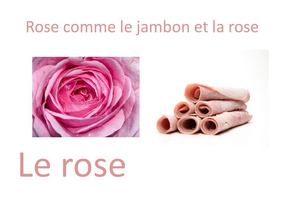 Rose comme le jambon et la rose