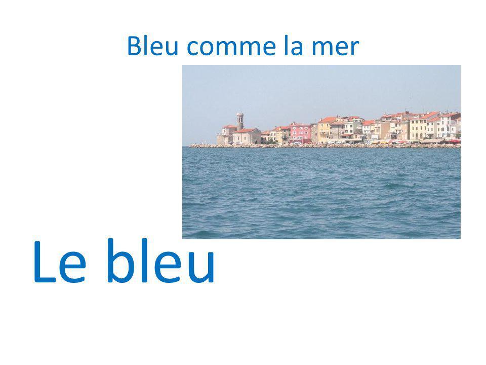 Bleu comme la mer Le bleu