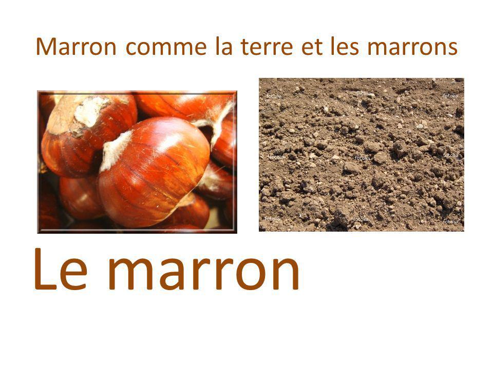 Marron comme la terre et les marrons