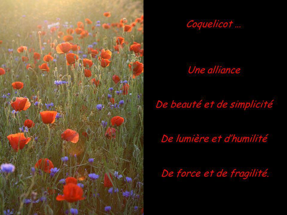 De beauté et de simplicité